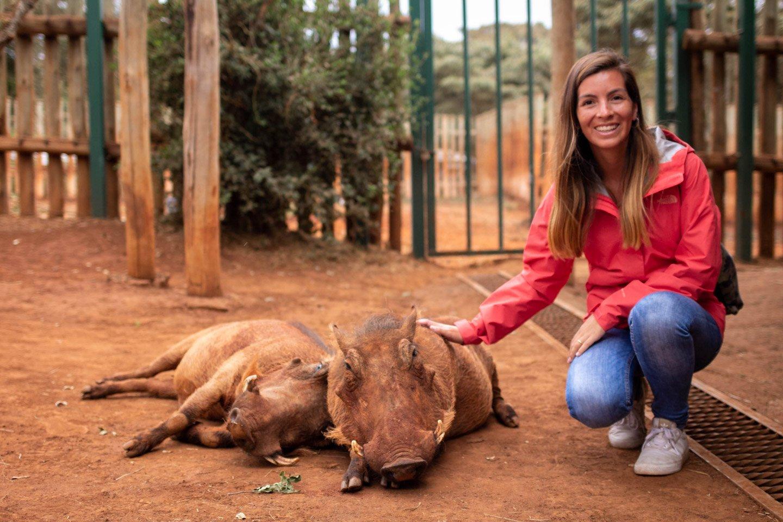 Carla con los Jabalíes en el David Sheldrick's Wildlife Trust.