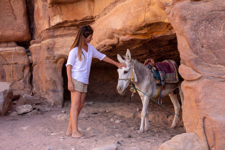 Carla y un burrito en Petra.
