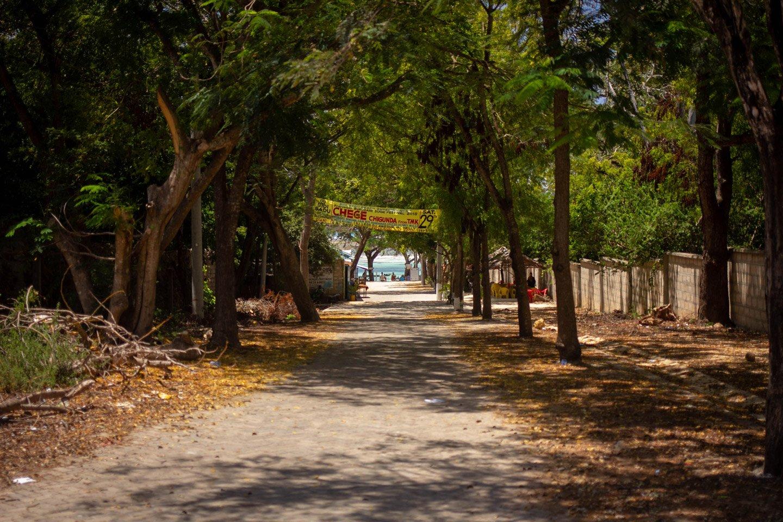 Camino a Diani Beach, Kenia.