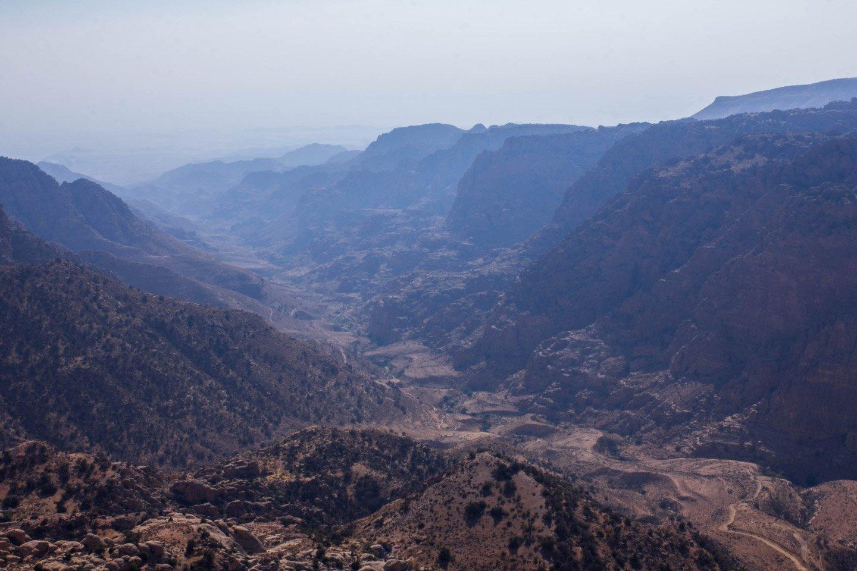 Quebrada de la Reserva de Dana.