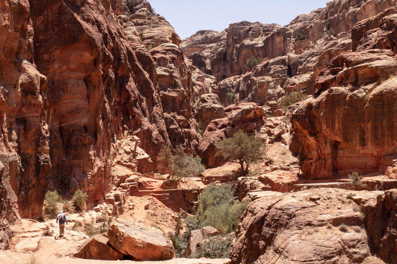Rutas entre cerros, Petra.